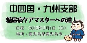 中四国九州 糖尿病ケア